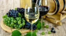 Wijnproefmiddag 31 oktober 2021 in de oude kerk Dongen voor goede doel.